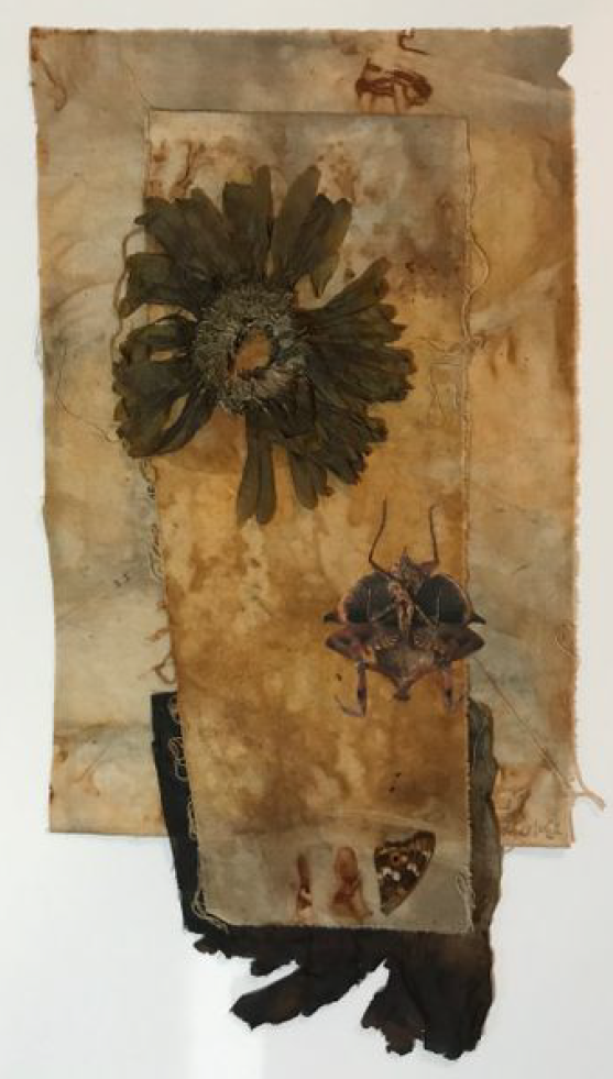 Flora Shroud, Bryant Whelan, Botanic Eco Printing / Mixed Media Collage, $250