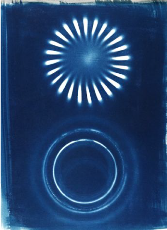 Origins, Mike Kittrell, Cyanotype Photogram, $200