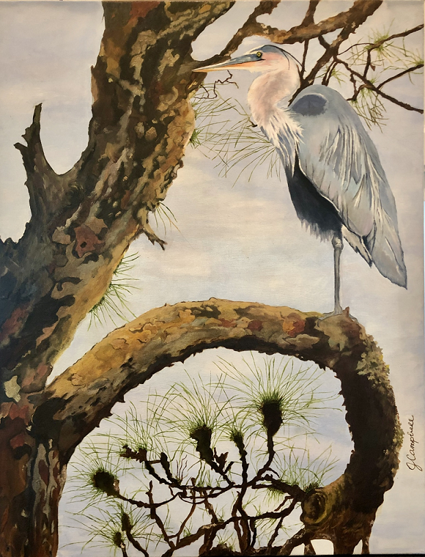 The Watchful Heron, Judy Campbell, Oil on canvas, NFS