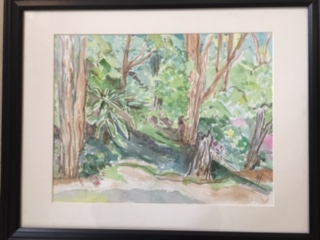 Where the Big Tree Fell, Suzanne Fox, Watercolor, $100