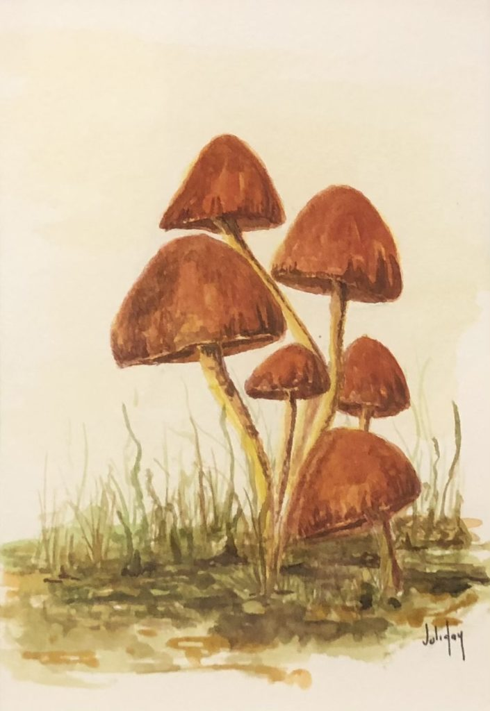 Mycena, Juli Day, Watercolor on Paper, $125