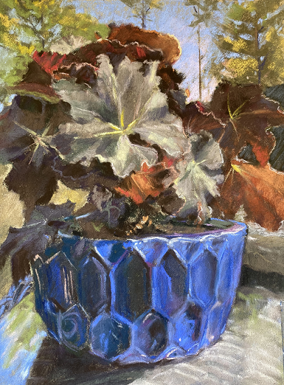 Begonia in the Time of COVID, Melissa Root, Pastel on Uart, $300