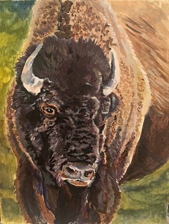 American Bison, Jeremy Sigle, Acrylic on Board, $250