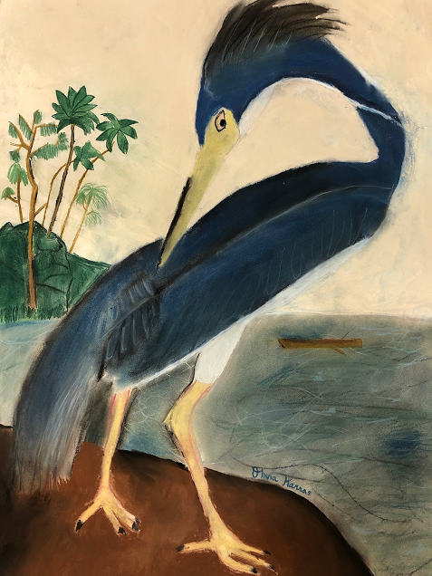 Olivia's Rendering of Audubon's Great Blue Heron, Olivia Karras, 7th Grade,  Bay Minette Middle School, Mixed Media, Chalk, Charcoal, Pastel