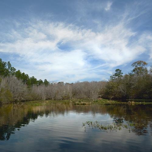 Crooked Creek, Mike Carmichael, $330